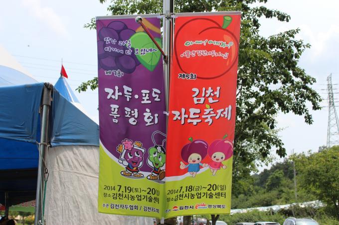 제5회   김천자두축제